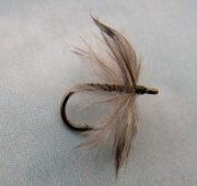 Soft Hackle Aftershaft Fly