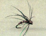 Secret Soft Hackle Wet Fly